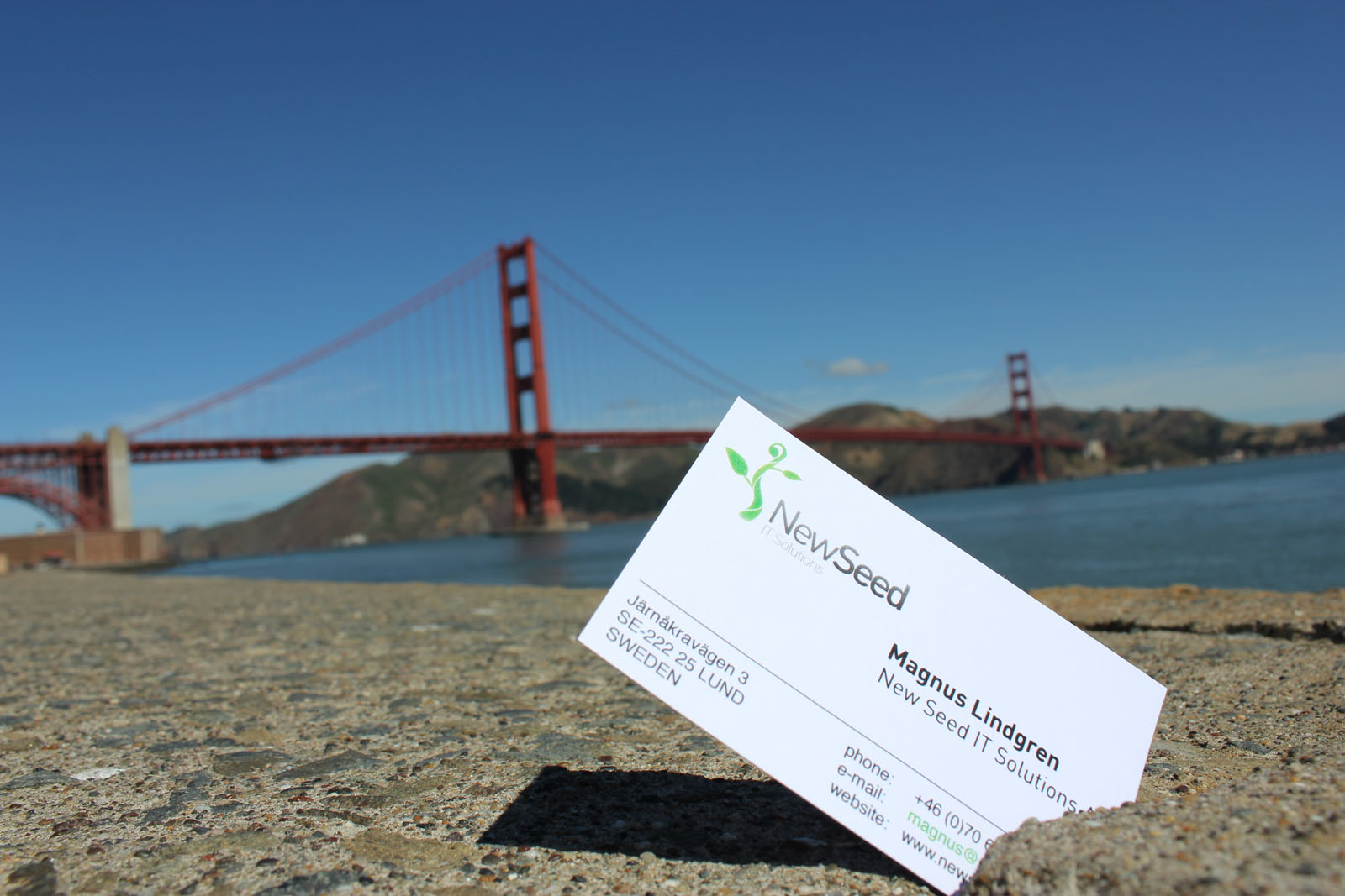New Seed med Golden Gate